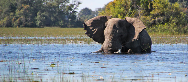 Things to See on Your Holidays to Zimbabwe