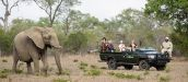 SAFARI.COM - African Safari Tour Agency